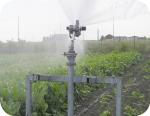Beta impianti di irrigazione for Irrigazione per aspersione